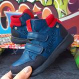 Демисезонные ботинки для мальчика, код 752
