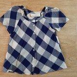 Кофта, футболка, блузка летняя для девочки, 5-7 лет