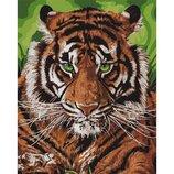 Картина по номерам. Непобедимый тигр KHO4143