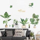 3D интерьерные виниловые наклейки на стены Набор Кактусов - Растений 2 листа 65-40 см в детскую 3