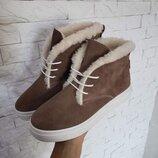 Новинка Натуральные замшевые женские ботинки слипоны с эластичной шнуровкой