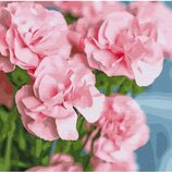 Картина по номерам. Brushme Розовая камелия GX30095. Брашми.