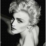 Картина по номерам. Brushme Элегантность в черно-белом GX9954. Брашми.