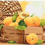 Картина по номерам Идейка. Золотистый абрикос 40 50см KHO5565