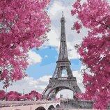 Картина по номерам. Brushme Магнолия в Париже GX29271