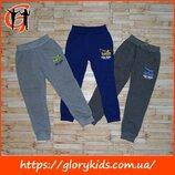 Утеплённые спортивные штаны для мальчика Active Sport, р. 98-128. Венгрия
