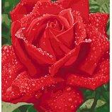 Картина по номерам. Нежность розы 40 50см KHO3045