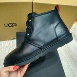 Мужские ботинки кожа черные Ugg Australia Original