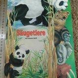 Млекопитающие Saugetiere Pestalozzi книга книжка детская для детей на немецком языке