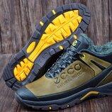 Мужские кожаные зимние ботинки,кроссовки Ecco 1111 кор