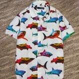 Красивая рубашка с акулами Next,рост 128 см 8 лет .