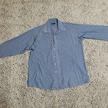 Рубашка в полоску, рубашка полосатая Pierre Cardin