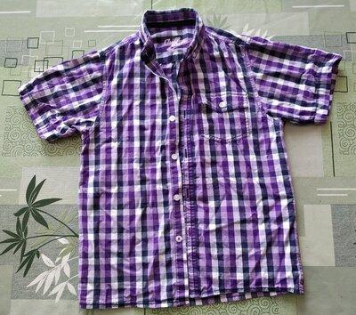 Рубашка клетка Яркая с коротким рукавом В хорошем состоянии Отличная рубашка, сзади надпись. Цвета