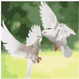 Картина по номерам Идейка. Белоснежные голуби 40 40см KHO4149