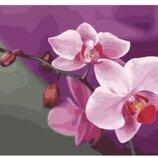 Картина по номерам. Букеты Розовые орхидеи 40 50см KHO1081