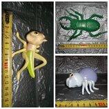 Большие насекомые Кузнечик паук жук