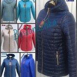 54-70, Демисезонная женская куртка. большой размер. Жіноча куртка. куртка с капюшоном. ботал