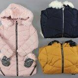Куртка, утепленная , пальто для девочек Венгрия Размеры 8,10,12 лет