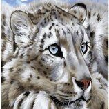 Картина по номерам Амурский тигр GX23620. Классик. Картины по номерам