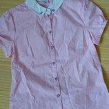 Блузка Ostin розовая бабочки хлопок на 152 рост 11-12 лет