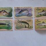 Марки почтовые CUBA correos 1971 г. Серия Рыбы.
