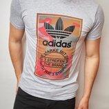 Мужская футболка Adidas Адидас DS-5939