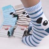Жіночі бавовняні шкарпетки житомир koi з пандочками еп-оам1099