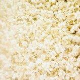 Жасмин сушёный цветы