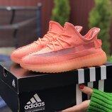 Кроссовки женские Adidas x Yeezy Boost, кораловые