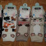 Носки котики