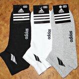 Носки мужские Adidas стрейч сетка короткие р. 41-45
