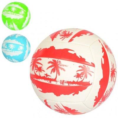 Мяч волейбольный EN 3296