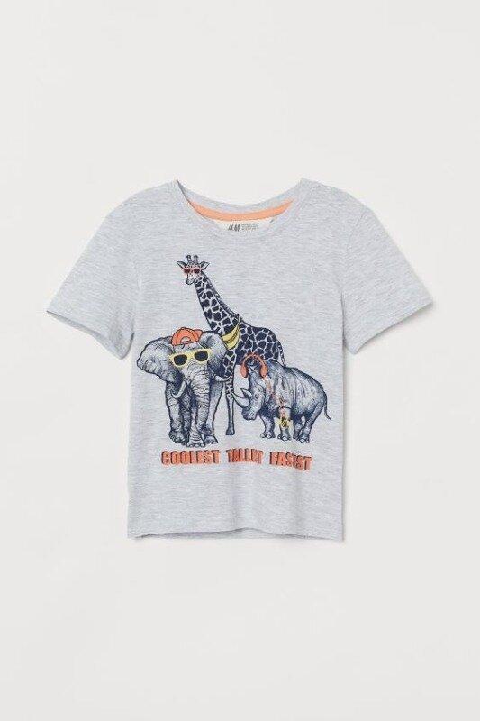 Футболка с принтом для мальчика H&M: 130 грн - футболки, майки h&m в Днепропетровске (Днепре), объявление №26648586 Клубок (ранее Клумба)