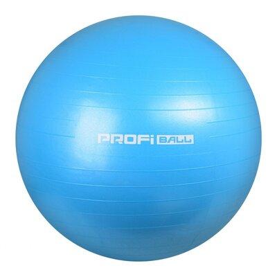 Мяч для фитнеса-65см M 0276 Голубой