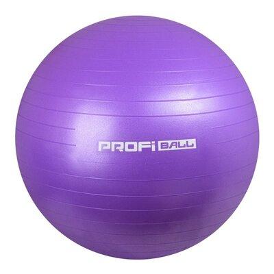 Мяч для фитнеса 65 см M 0276 Profi Ball фитбол фиолетовый