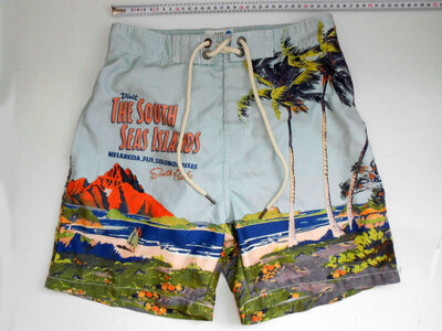 Мужские пляжные шорты Easy Surf