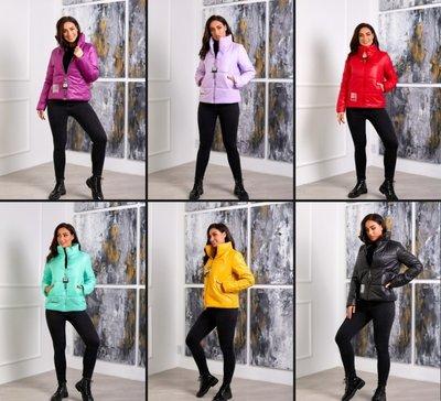 Куртка любимая модель 6 цветов 48 - 62 размер, эксклюзив