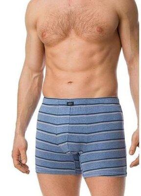 Мужские удлиненные шорты небесного цвета key. мужские трусы. key mxm 320 b20