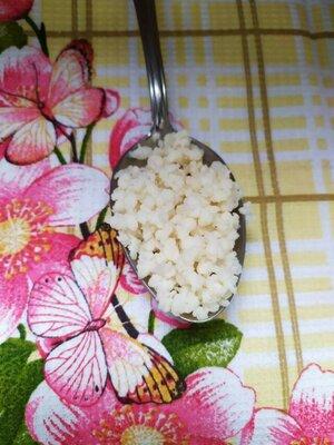 Продано: Тибетский молочный гриб / живая закваска