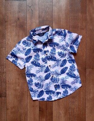 Primark Стильная летняя рубашка хлопок легкая папоротник 6-7 лет 122 см