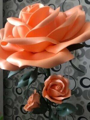 Ночник Роза . Ростовые цветы
