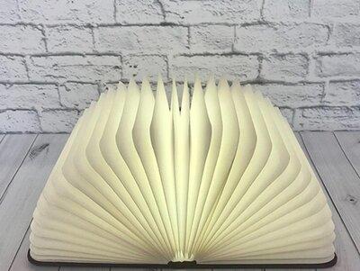 Книга светильник. Большая 50см
