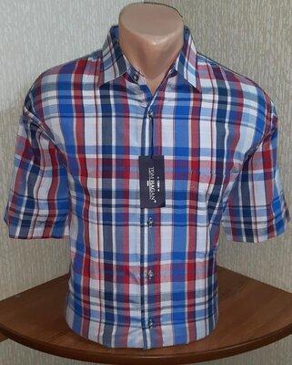 Фирменная рубашка с короткими рукавами tom hagan uk ltd., молниеносная отправка