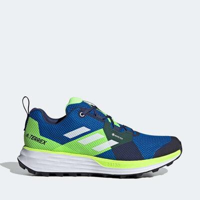Мужские кроссовки Adidas Terrex Two GTX EH1834