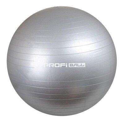 Мяч для фитнеса фитбол Profit 65 см, gray