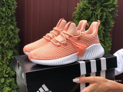 Продано: Жіночі кросівки