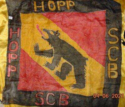 Фирменний спортивний банер платок Hopp