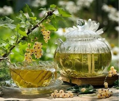 Чай «Зеленый2» - лист малины, лист шелковицы, хвоя, мелиса. Вес 50 грамм