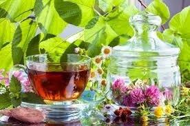 Чай мятный с клевером. Вес 25 грамм