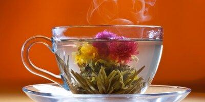 Чай чабрец с клевером. Вес 25 грамм